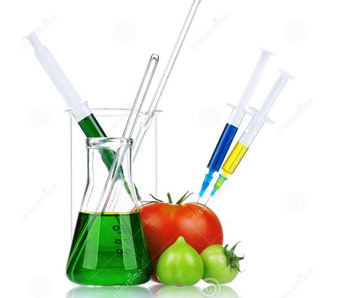 พืชดัดแปลงพันธุกรรม (GM Crops)#1 จีเอ็มโอ, วิธีสร้างพืชจีเอ็ม, พื้นที่ปลูกพืชจีเอ็มทั่วโลก, พืชจีเอ็มกับประเทศไทย