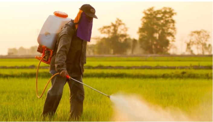การแบนสารเคมีกำจัดศัตรูพืชอันตราย#1 ไกลโฟเซต (Glyphosate)