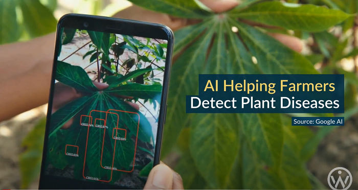 จริงหรือไม่ที่ Google กำลังสร้าง AI ให้กลายเป็น Skynet#5 Agriculture