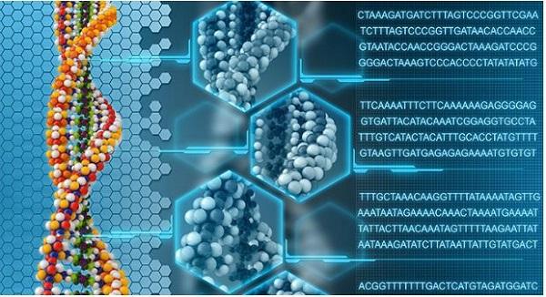 จริงหรือไม่ที่ Google กำลังสร้าง AI ให้กลายเป็น Skynet#15 Genome/Mutation
